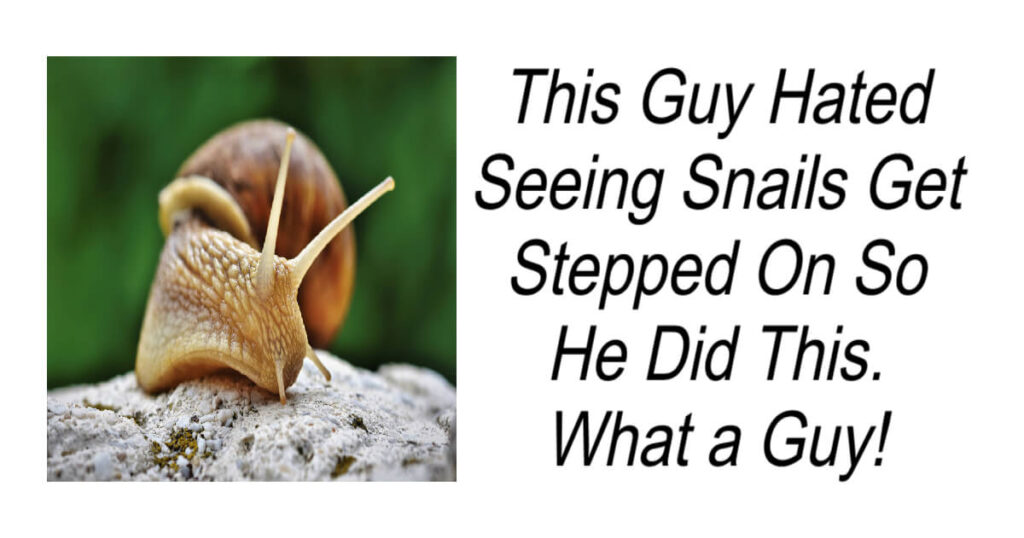 Guy Hated Seeing Snails Get Stepped On