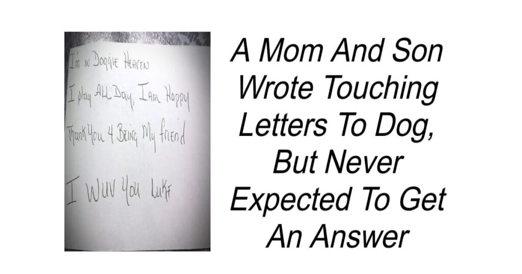 Son Wrote Touching Letters To Dog