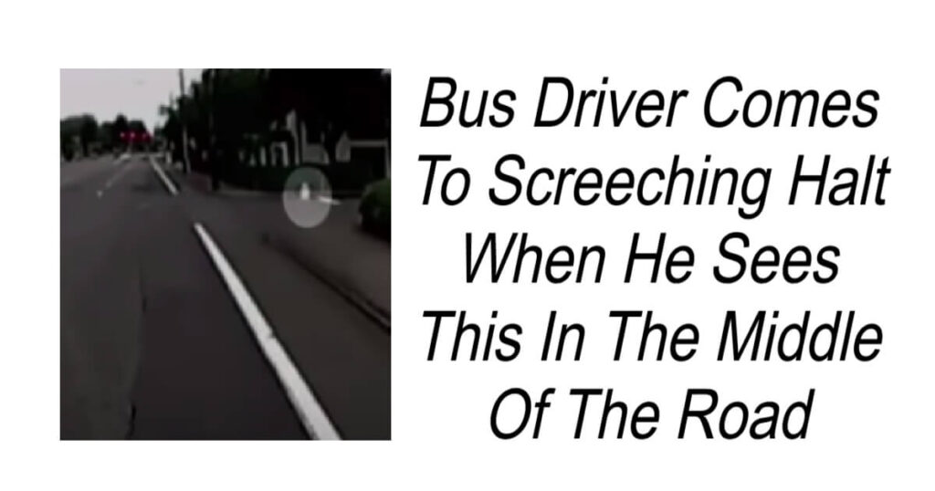 Bus Driver Comes To Screeching Halt When He Sees This