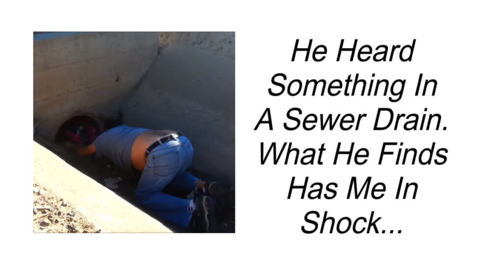 He Heard Something In A Sewer Drain.