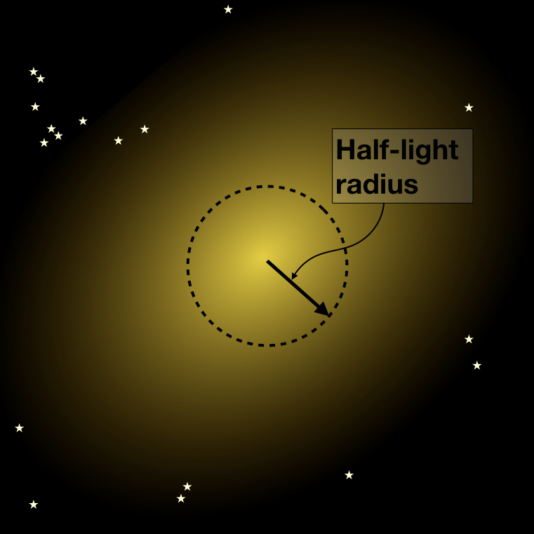 """To be able to compare the size of galaxies, often the so-called """"half-light radius"""" is used; the radius within which half of the galaxy's light is emitted."""