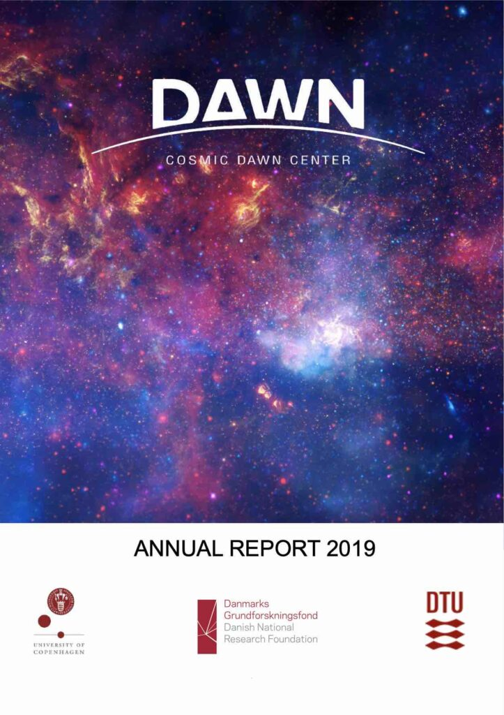 dnrf-report-2019-cover