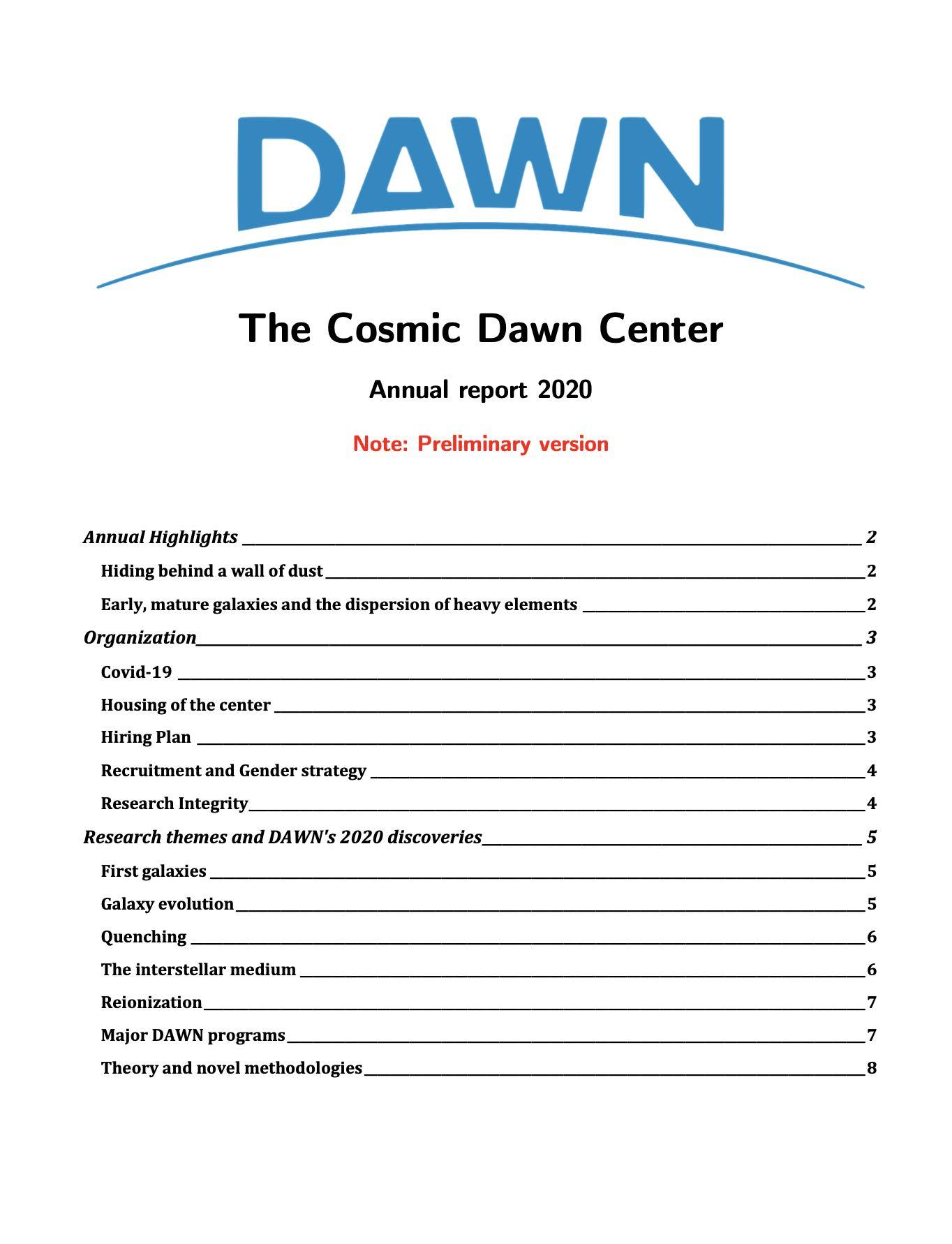 dnrf-report-2020-prelim-cover
