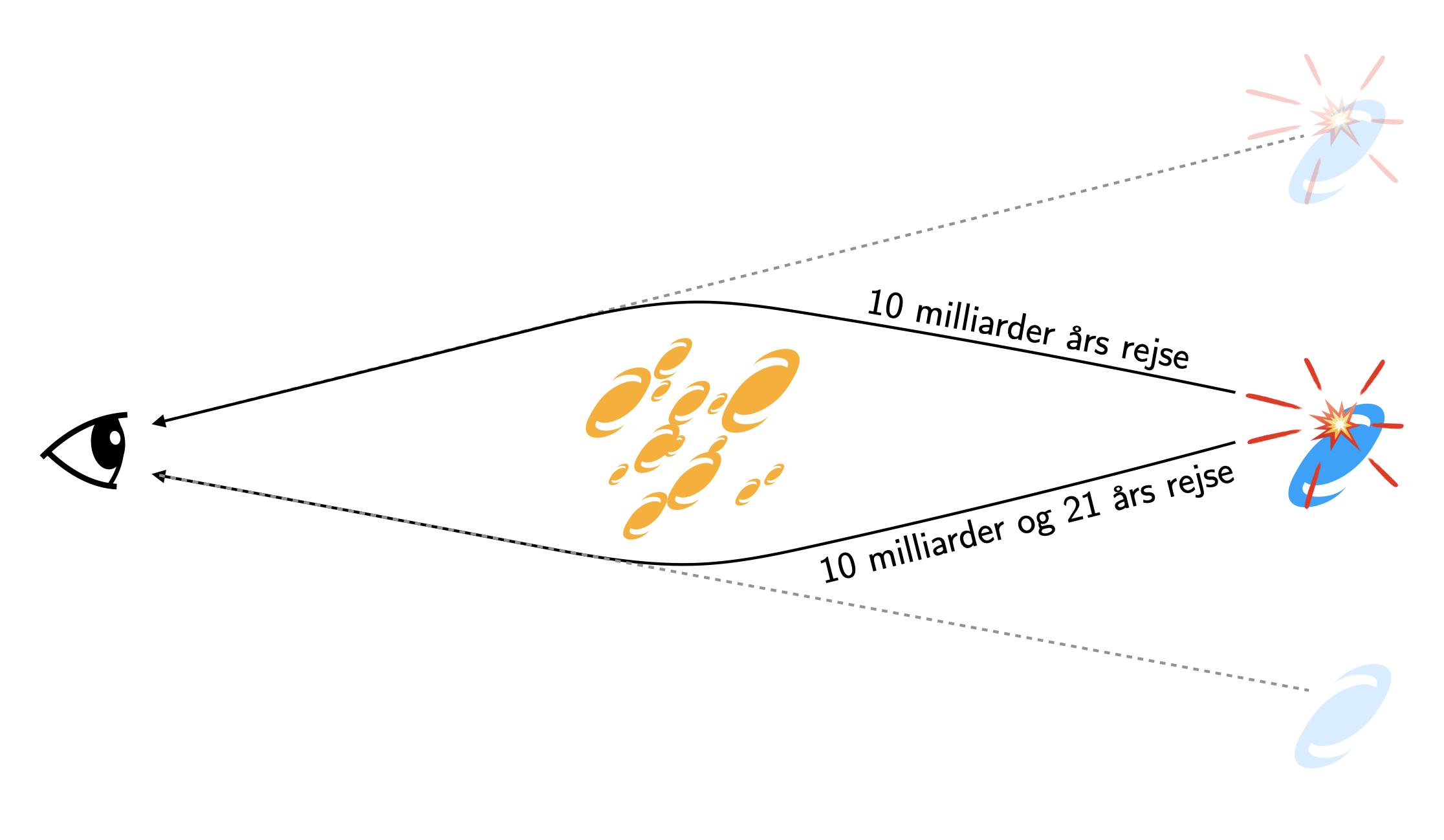 fig2-mechanism-dan