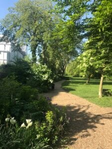 a garden with trees and shrubbery
