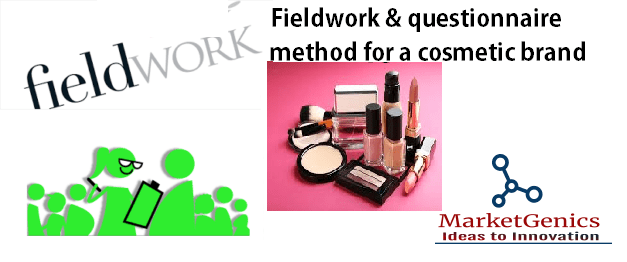 Address verification study for a cosmetic brand: Fieldwork & questionnaire research method