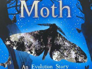 MOTH – an evolution story