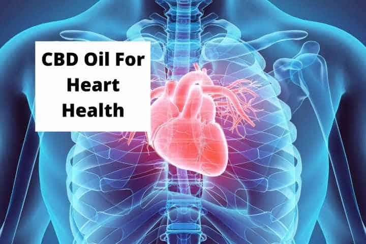 CBD Oil For Heart Health