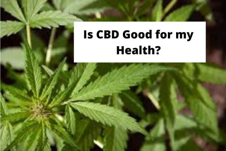 Is CBD good for my Health