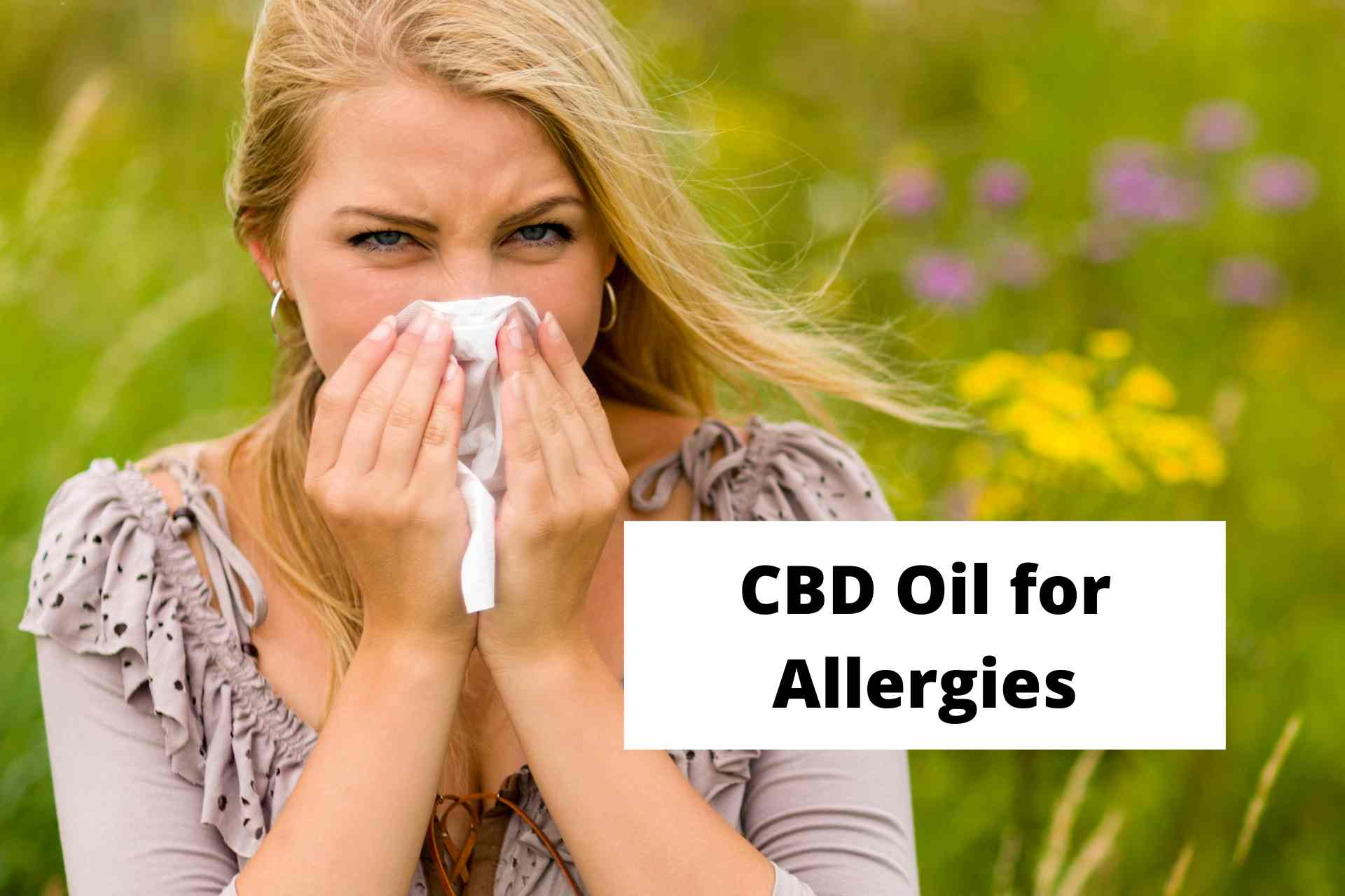 CBD Oil for Allergies