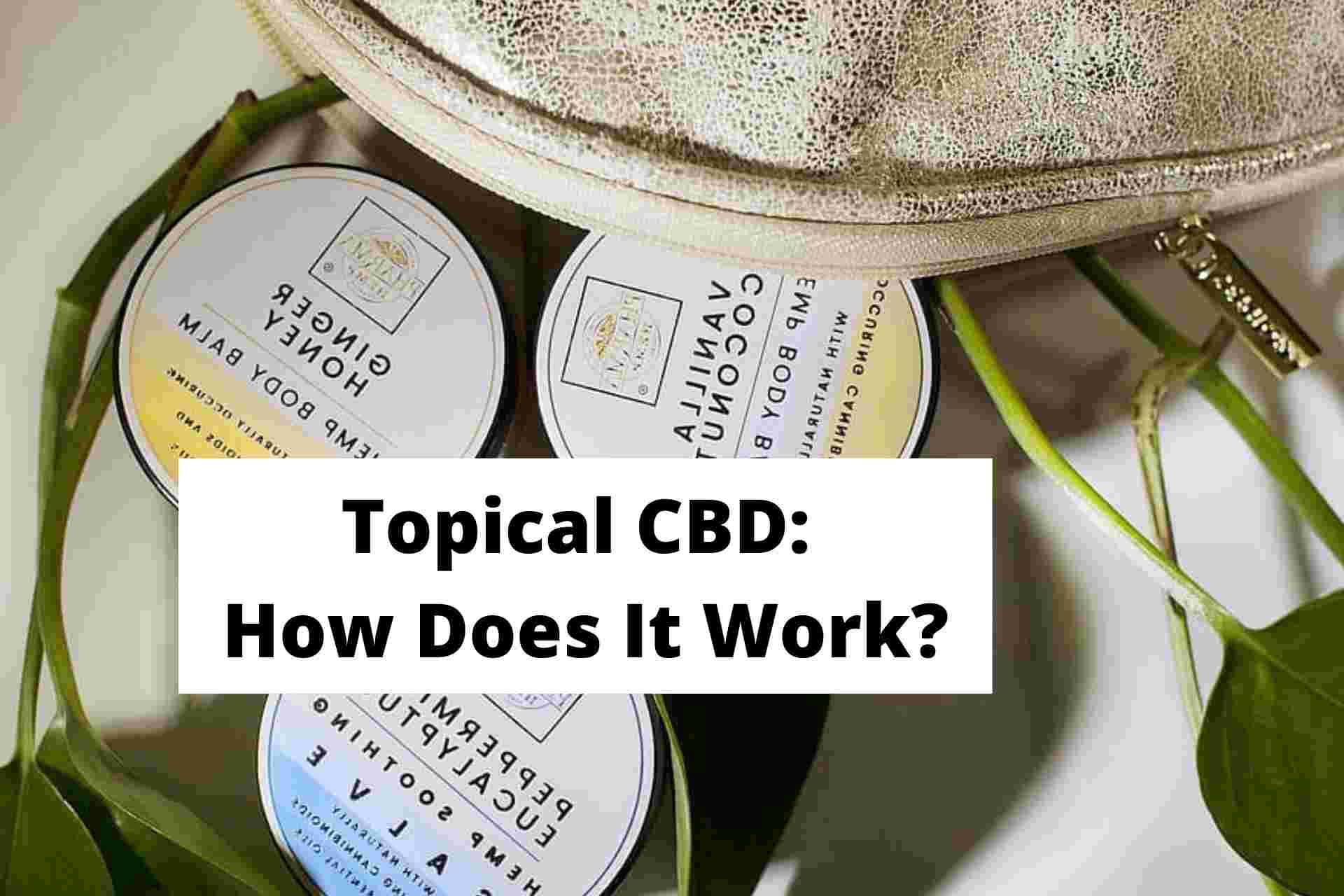 Topical CBD: How Does It Work?
