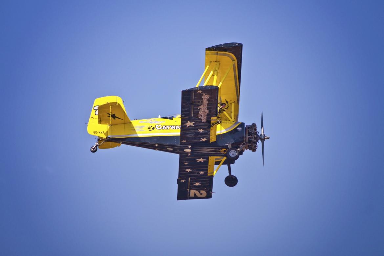 Daring Wingwalkers Of Skycats Catwalk