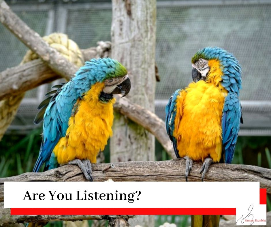 Two parrots on a branch looking at each other as if they were having a conversation with the title Are You Listening?