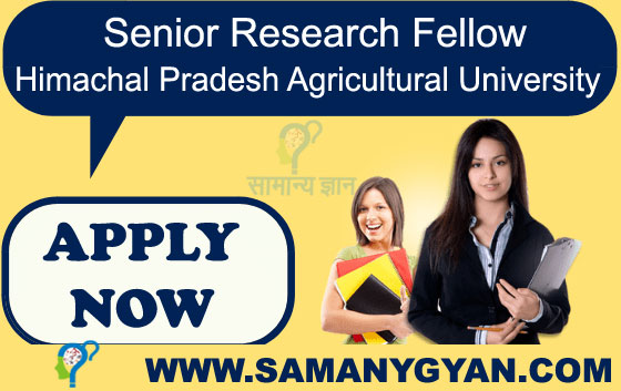 Senior Research Fellow