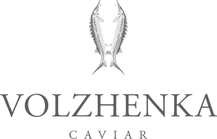 Volzhenka   Luxury Caviar   Gourmet Shop   Premium Tableware