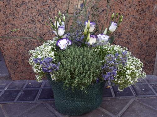 Centro cesta lilas