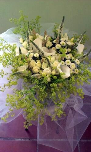 Ramo flores tulipanes blancos