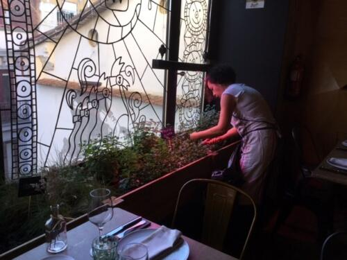 Restaurante con huerto