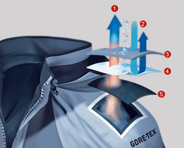 GORE-TEX process showing construction, moisture release and water and wind kept out