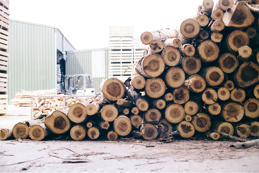 Certainly Wood British Logs