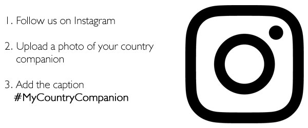 Philip Morris Country Companion Competition | Instagram