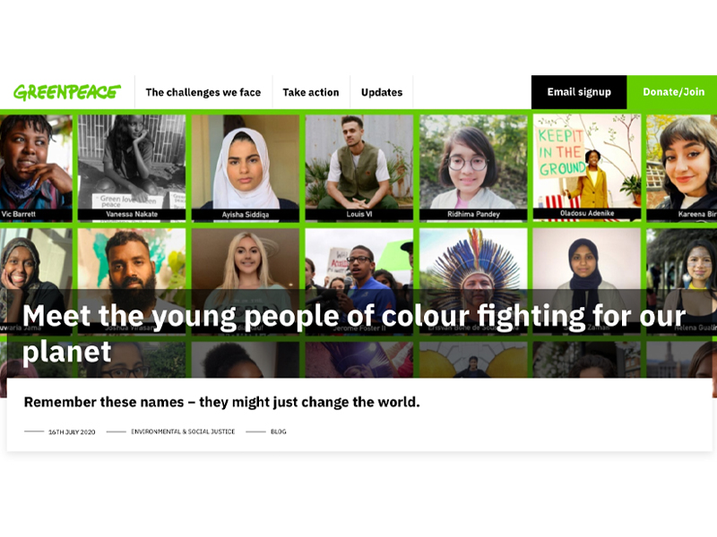 'Meet the young people of colour fighting for our planet' article