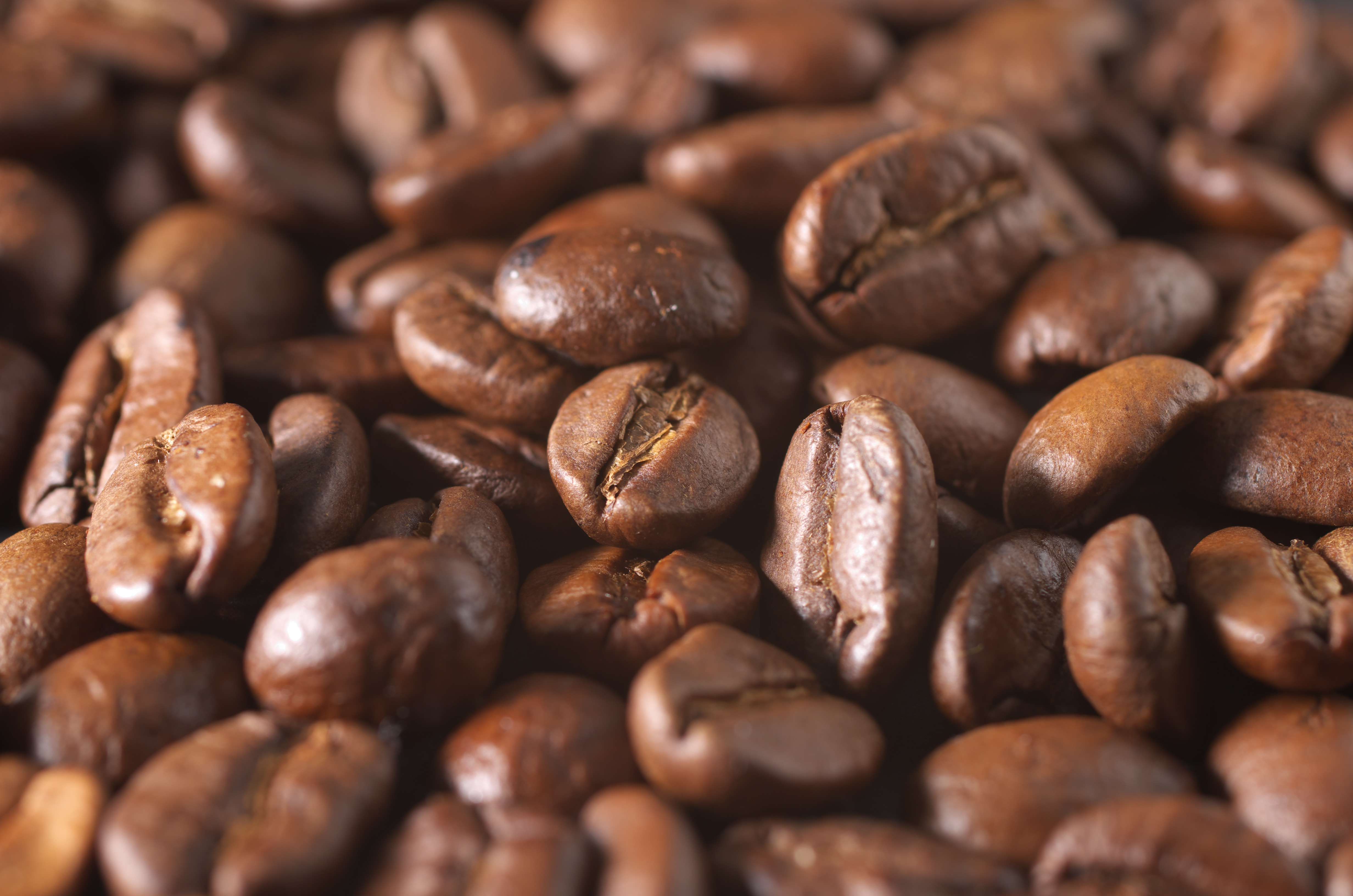 provenance in the international coffee market?