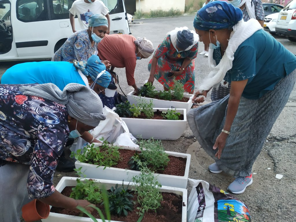 Nof Hagalil Residents' Group prepares planters in honor of the new year, to improve the facades of the residential buildings in the neighborhood