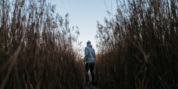 A person running through cornfields with a hoodie