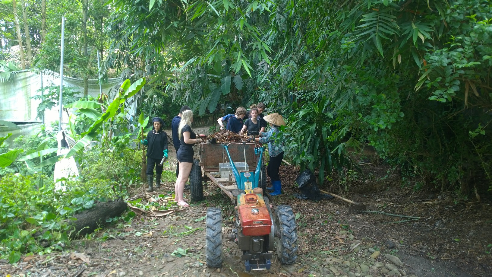 Volunteers loading a tractor