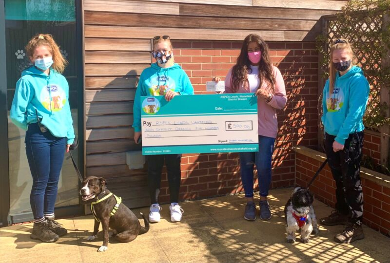 Pavers Foundation Awards £500 to Community Animal Charity