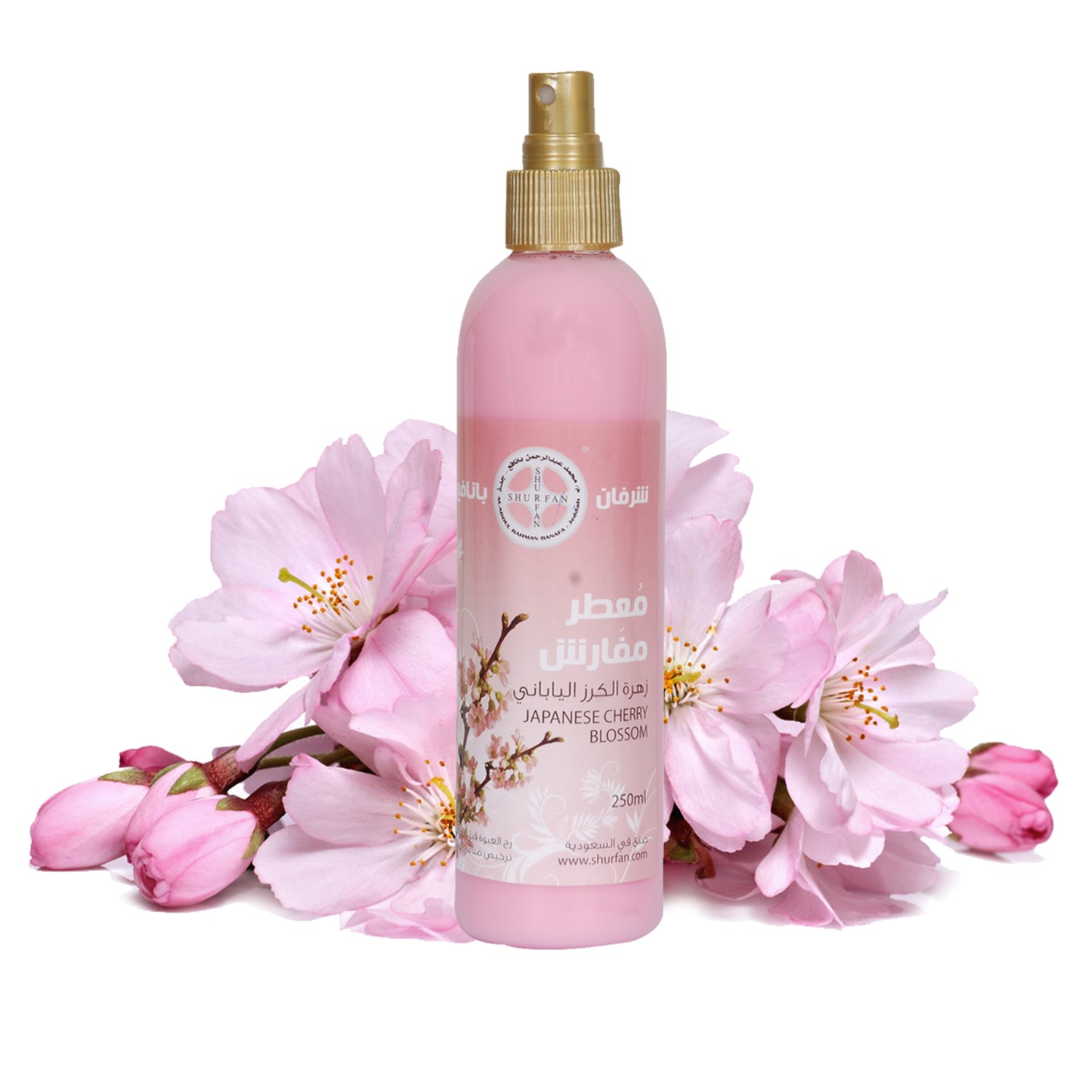 Furniture spray - Japanese Cherry Blossom Image