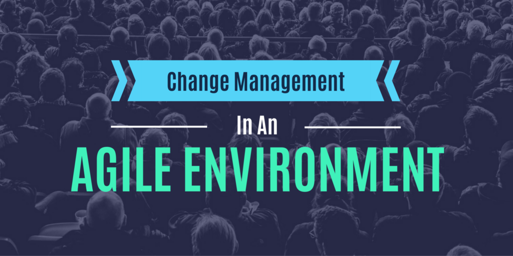 Change Management in an Agile Environment 1