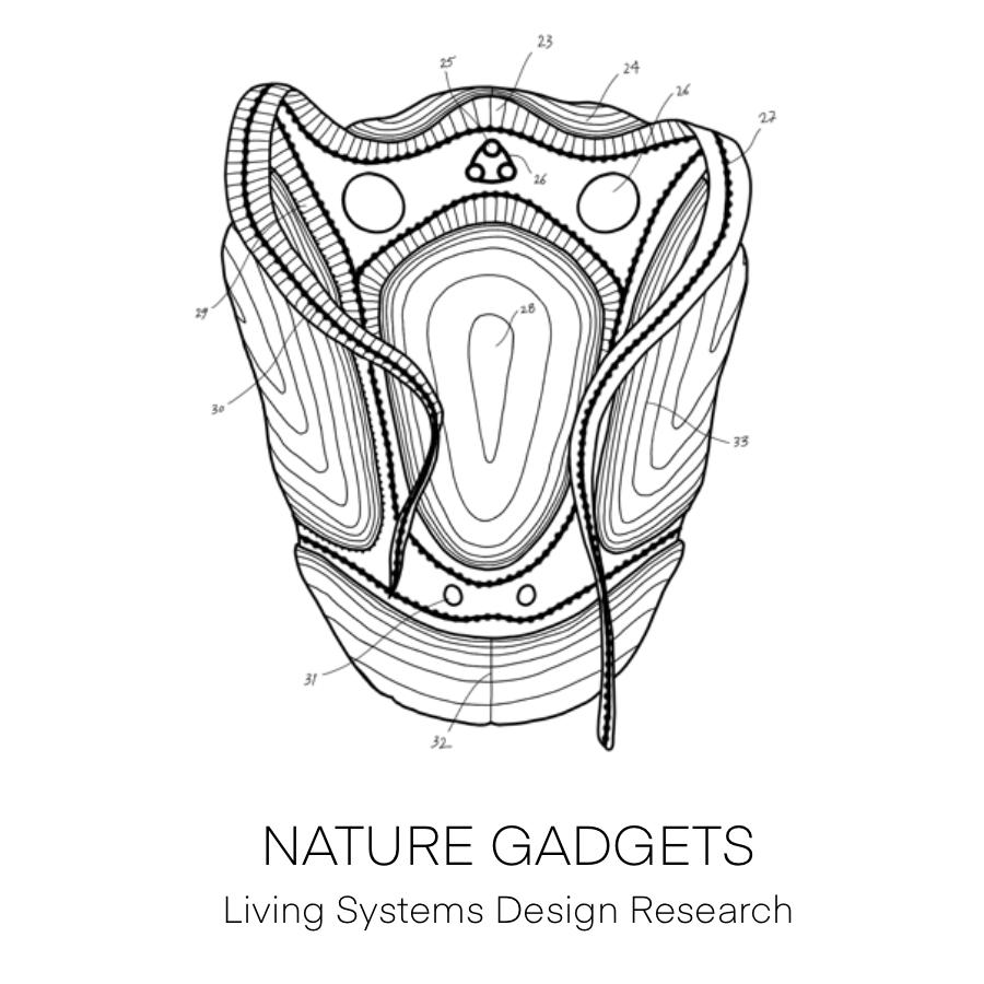Umair Zia Nature gadgets