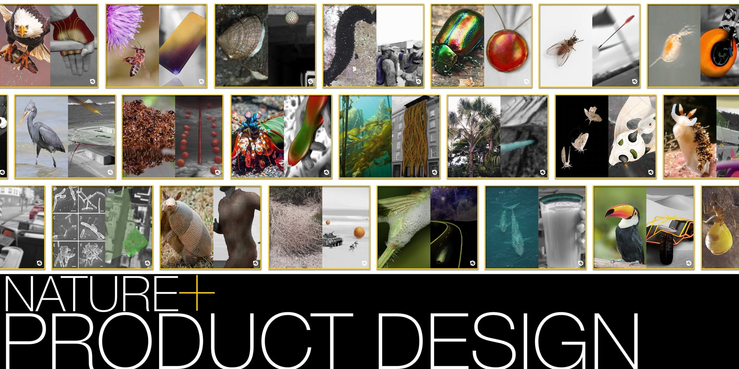 Product Design by Umair Zia- founder of Nature Gadgets and NatureTutor.com