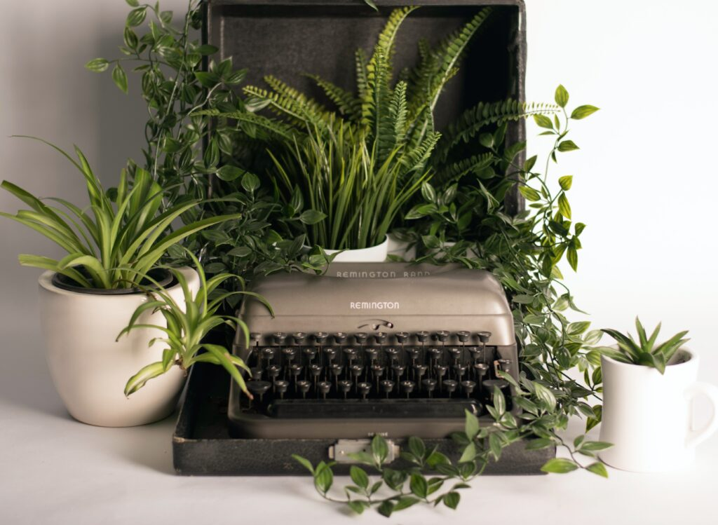 An old style typewriter covered in potted green plants
