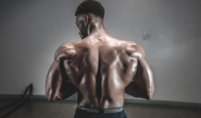 Best Legal Steroids: Do They Really Work?