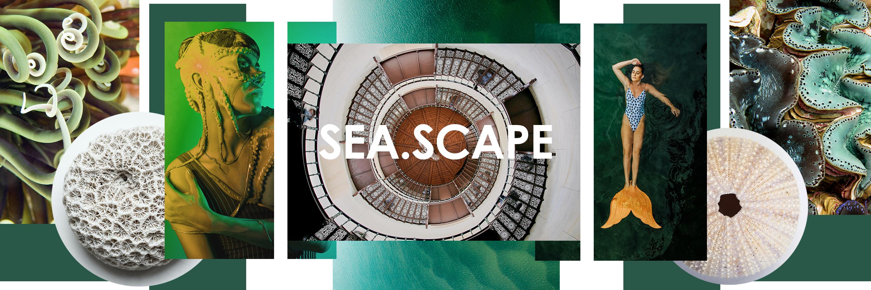 seascape full