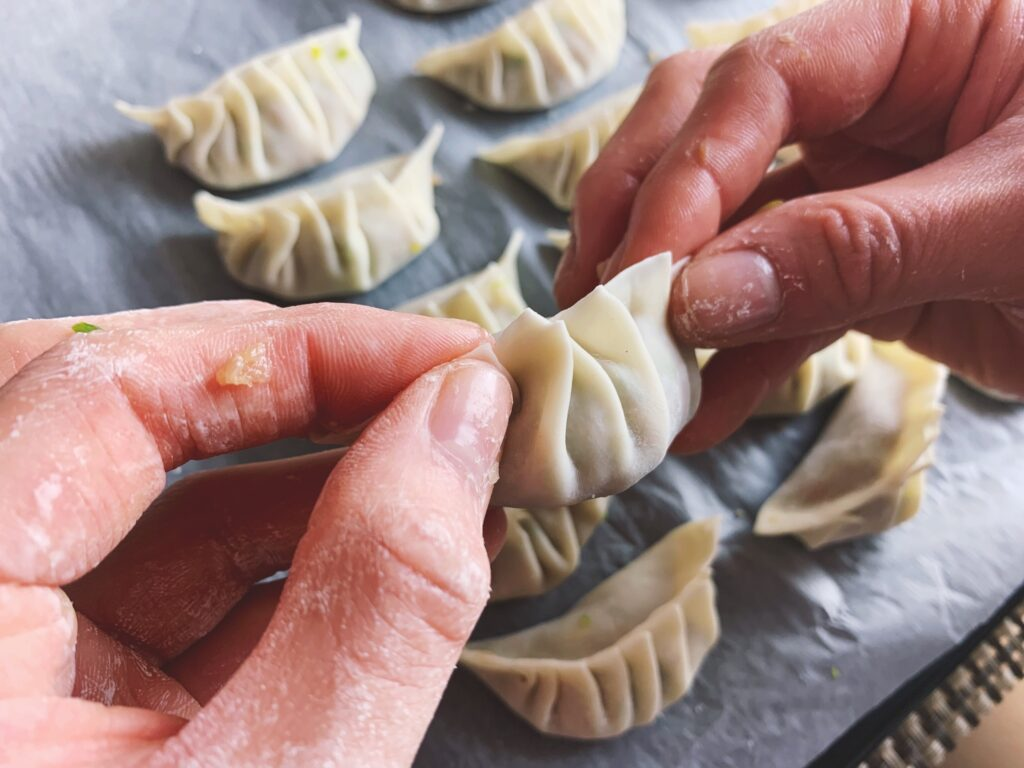 Pork Dumpling - Wrapping up
