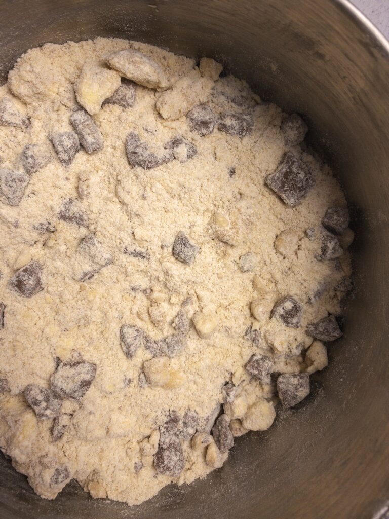 Chocolate Chip Cookie Batter - Before Eggs