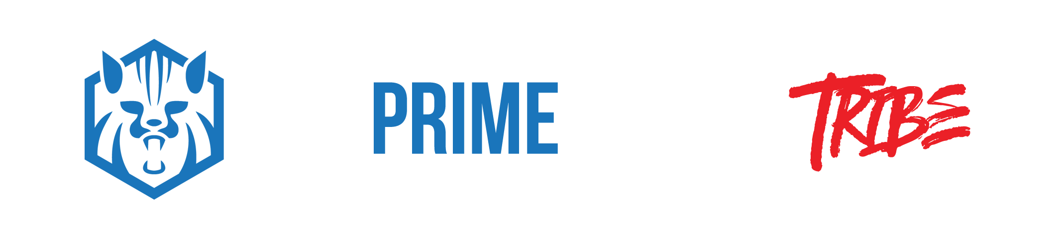 The Prime Human