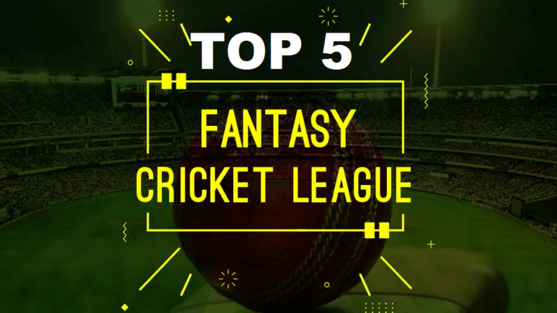 Fantasy Cricket Leagues