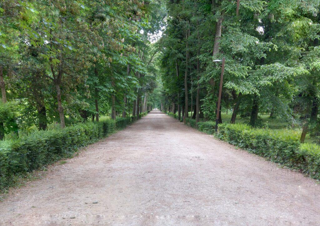 Parco delle Cascine Florence