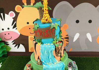 Birthday Cake 1st