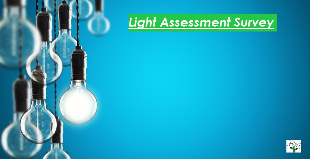 Light assessment survey - Perfect Pollucon Services