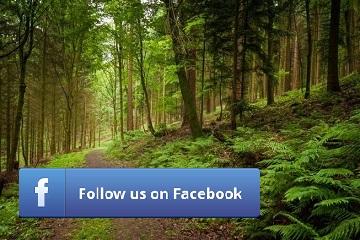 Facebook Follow Small - Perfect pollucon Services