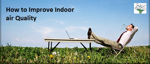 How to Improve Indoor air quality?