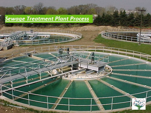 Sewage Treatment Plant Process STP