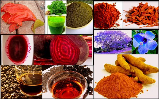 Organic colours for Holi