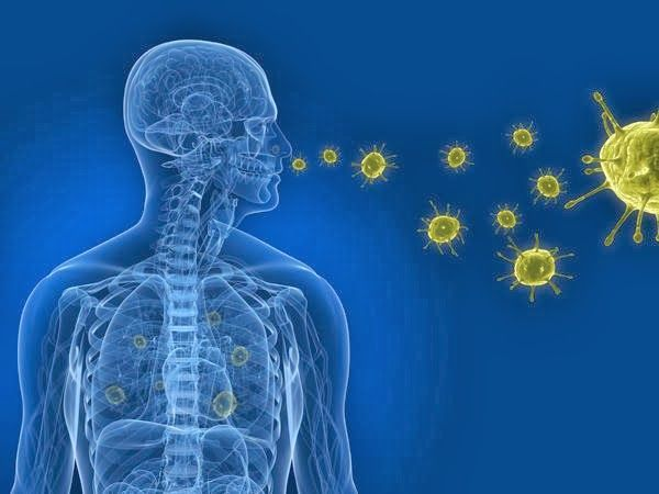 Particles entering in human body - Air Purifier for Home & Its Benefits